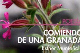 """Esther Muntañola portada """"Comiendo de una granada"""""""